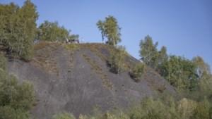 Mijnsteenberg Heksenberg wordt toegankelijk monument, maar wat kun je er dan mee?
