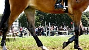 Straf voor Ierse ruiter die paard de dood in joeg