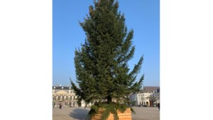 Vandalen vernielen metershoge kerstboom op Vrijthof in Maastricht