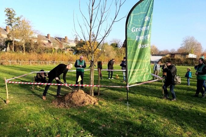 Eerste boom voor buurtpark De Groene Poort Oost in Scharn