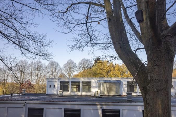 Dwergvleermuizen zorgen ervoor dat gemeente Landgraaf al jaren leegstand pand nog niet heeft kunnen slopen