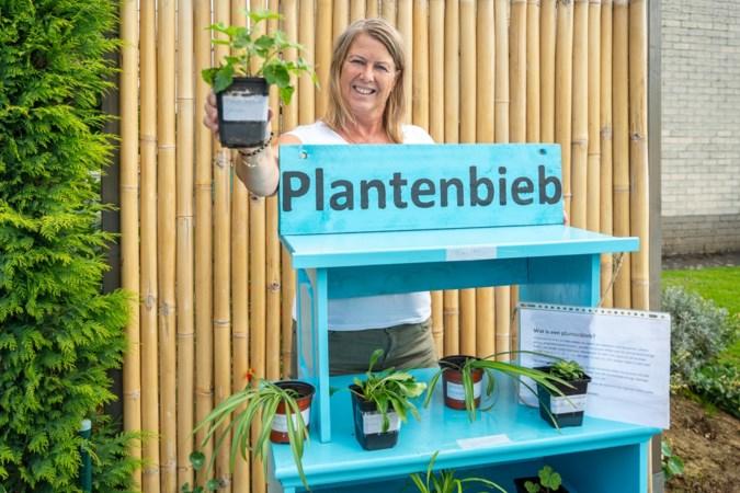 Na de minibieb doet ook de plantenbieb zijn intrede in de Westelijke Mijnstreek