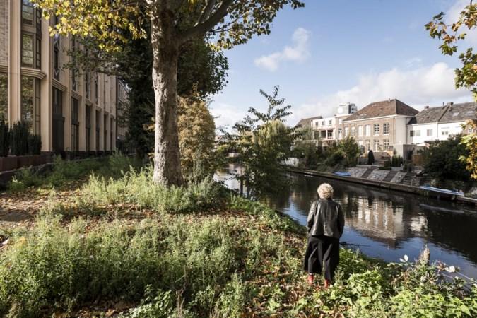 Gemeente slecht discussie: lage begroeiing bij wandelpad langs de Roer in Roermond