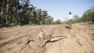 Provinciaal Regisseur moet samenwerking bij grote natuurbranden gaan verbeteren