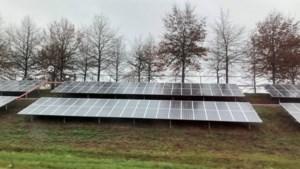 Plan voor hectare vol zonnepanelen op perceel aan Veldweverstraat