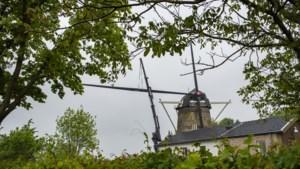 Het mysterie van de bijzondere molenwieken van Gasthuis is opgelost