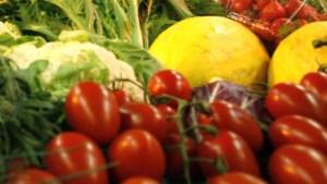 Moestuincoaches voor scholieren die eigen groenten willen verbouwen