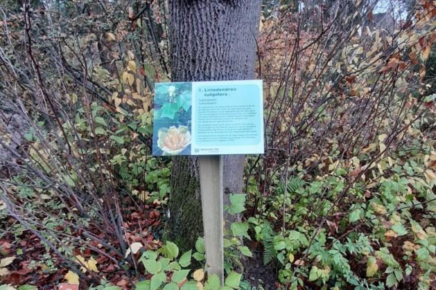 Bomenbordjes met informatie geplaatst in Botanische Tuin Kerkrade