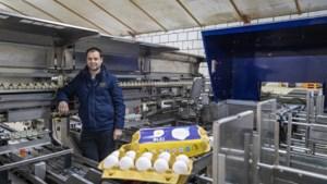 Nieuw duurzaam initiatief in de Limburgse pluimveesector: het 'bleie' ei