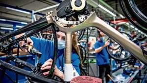 Fabrikant van e-bikes draait topjaar: 'De fietsen zijn nauwelijks aan te slepen'