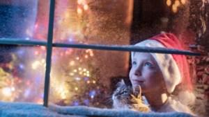 Winterse temperaturen, vorst én zon: 'Kans op koude kerst steeds groter'