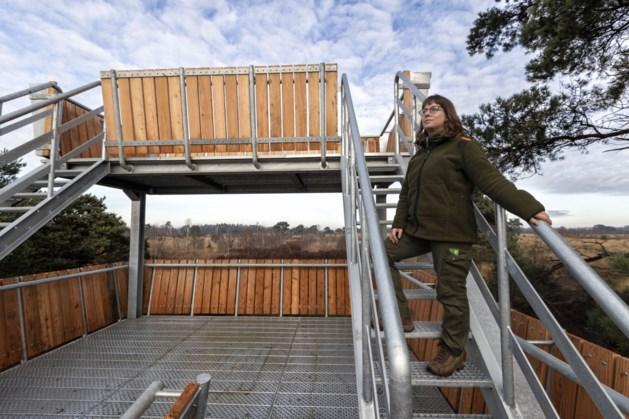 Nieuwe uitkijktoren in de Peel is straks voor iedereen toegankelijk