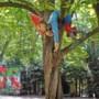 Extra politiecontroles in Odapark Venray vanwege het kapottrappen van kunstwerken