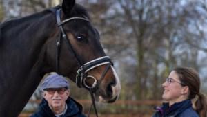 Eed Meijer (67) is vijftig jaar 'getrouwd' met zijn manege Galop in Landgraaf en dat voelt nog steeds goed