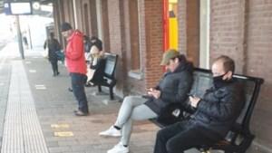 Ergens in Roermond: Turend op het mobieltje merkt niemand dat een man over de hondenriem struikelt