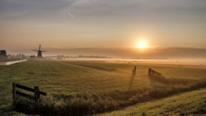 Gelukspsycholoog Josje Smeets: Het daglicht komt eraan en daardoor worden we blijer
