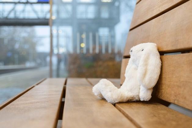 NS zoekt baasje van konijn dat op station Roermond is gevonden