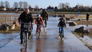 Hoogwater Maas: oevers en fietspaden overstromen, paard overleden