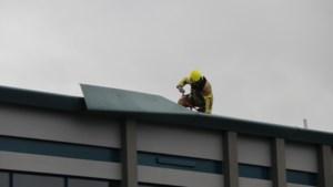 Harde wind veroorzaakt schade aan dak basisschool Venray