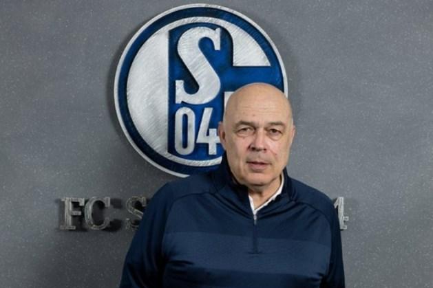 Stevens maakt bij hekkensluiter Schalke 04 plaats voor ervaren Gross