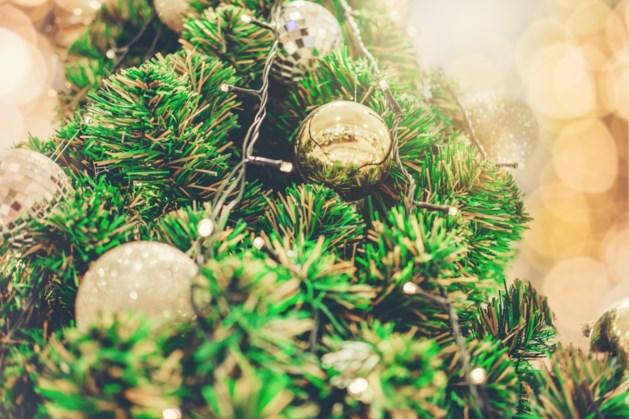 Kerstbomen inleveren op verschillende plaatsen in gemeente Bergen
