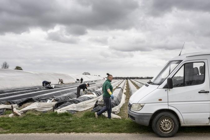 Polen trekt aan 'onze' arbeidsmigrant: 'Het is überhaupt niet eenvoudig om aan voldoende personeel te komen'