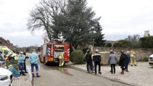 Ambulanceteam behandelt hond bij woningbrand in Wellerlooi