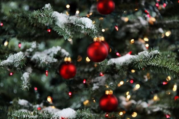 Kerstbomen inleveren in Bergen tot daags na Driekoningen