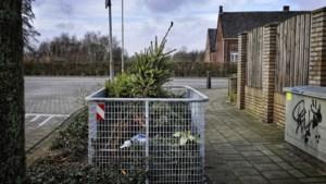 Twintig dumpplekken voor afgedankte kerstbomen in gemeente Venray