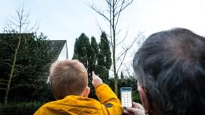 Vogels tellen in je tuin of op je balkon; doe mee aan de nationale Tuinvogeltelling