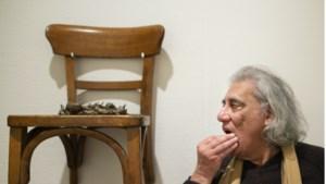 Topkunstenaar eist geld van Sittards museum na verdwijning en beschadiging van werken