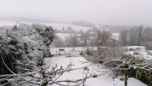 Meer sneeuw in Limburg: tien centimeter op Vaalserberg