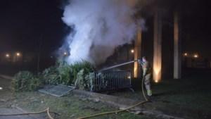 Stapel kerstbomen in brand in Venray