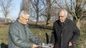 Bewoners buurtschap Mijnheerkens laten het er niet bij zitten: handtekeningenactie voor behoud van bomen in Stadsweide