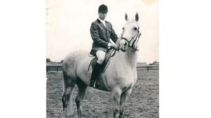 Eerst rijp voor de slacht, daarna toch nog een wereldberoemd springpaard