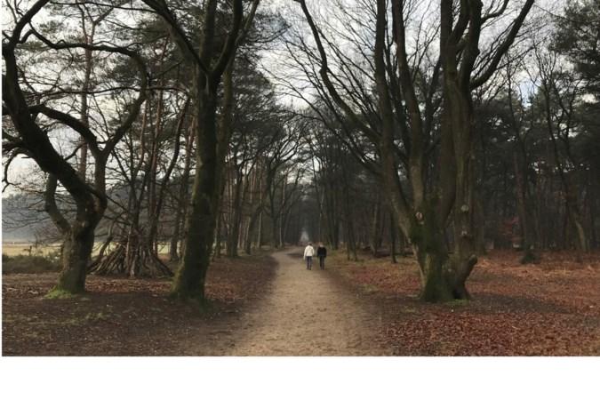 Wandelen over Romeinse wegen naar Malden
