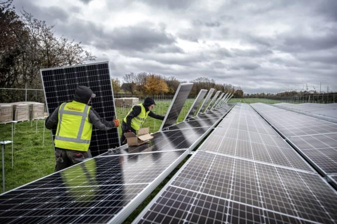Windmolens en extra zonneweides moeten Beekdaelen aan meer groene stroom helpen