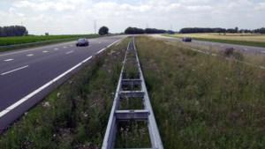 Snoeiwerkzaamheden langs snelwegen bij Beek, Stein en Geleen