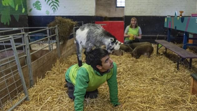 De kinderboerderij is dicht, maar het knuffelen met de dieren gaat gelukkig door