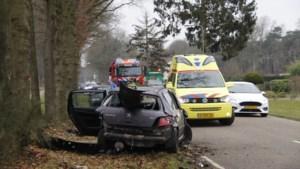 Automobilist gewond bij ongeval met tractor in Bergen
