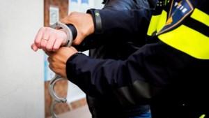 'Geintje' leidt tot aanhoudingen en waarschuwingsschot politie
