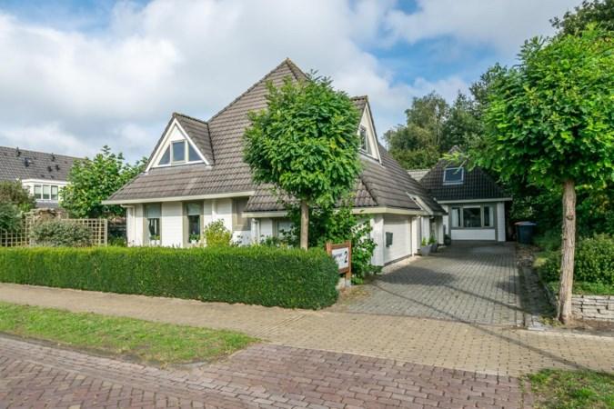 Houten huizen winnen aan populariteit: 'Zolang je hout droog houdt, gaat het net zo lang mee als beton'