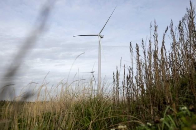 Groene stroom van duurzame leveranciers wordt steeds populairder