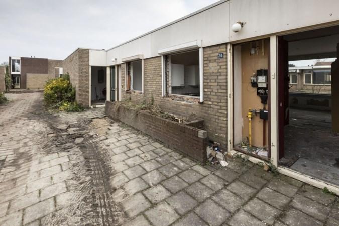 Bomen bouwplan Roermondse Vrijveld illegaal gekapt: buurt furieus op gemeente