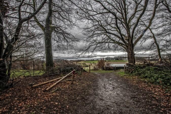 Strijd om voetpad door bosje bij Thull: open of dicht?