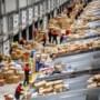 Hoe controleren postbedrijven op drugs? 'Speurhond Bob ruikt alles'