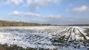 Aanplanten eerste tien hectare nieuw bos bij Altweerterheide start