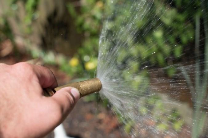 Baarlonaar (71) geeft bloemetjes water uit de beek: 550 euro boete