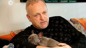 Dierenorganisaties boos op Gordon vanwege hondje Toto: 'Hij promoot dierenmishandeling'