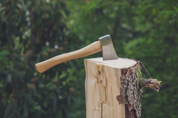 Vraagtekens bij bomenkap in bosperceel achter St. Odiliënberg